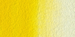 Cadmium Yellow Medium