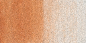 Iridescent Burnt Sienna