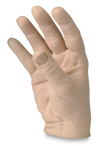 Male Human Hands