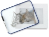 Clear Plexiglas Dry Erase Boards