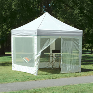 E-Z Up Express II Sun Shelter