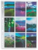 """120 Negative Sleeve (Shown with 2½"""" &times 3½"""" images)"""