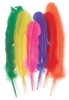 Assorted Turkey Feathers, Pkg of 6
