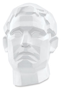 Male Perspective Head Image 1880