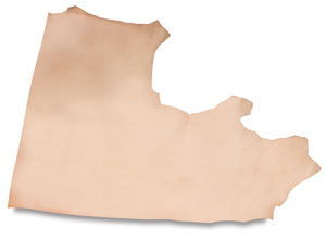First Quality Leather Hides Image 728